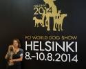 ЧМ 2014г.-Хельсинки